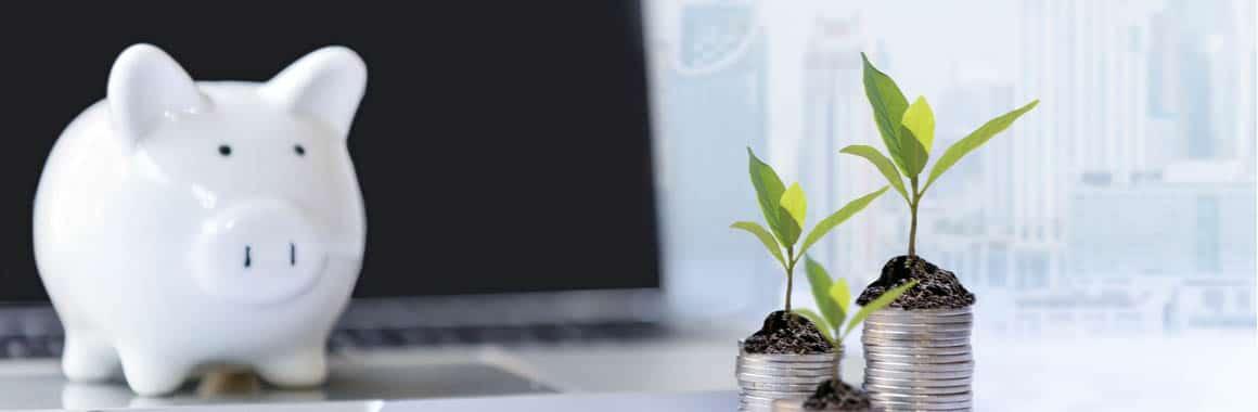 L'investissement pour les professionnels